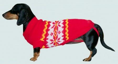 Як зв'язати светр собаці